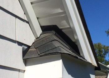 Flashed (Weatherproofed) Eave of Roof Critter Control Triad
