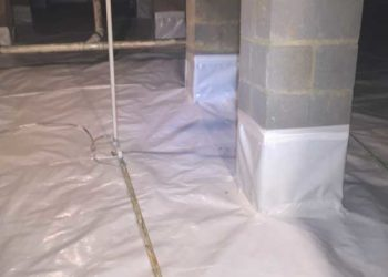 Crawl Space Protected Critter Control Triad